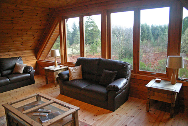 Lounge with views over forest