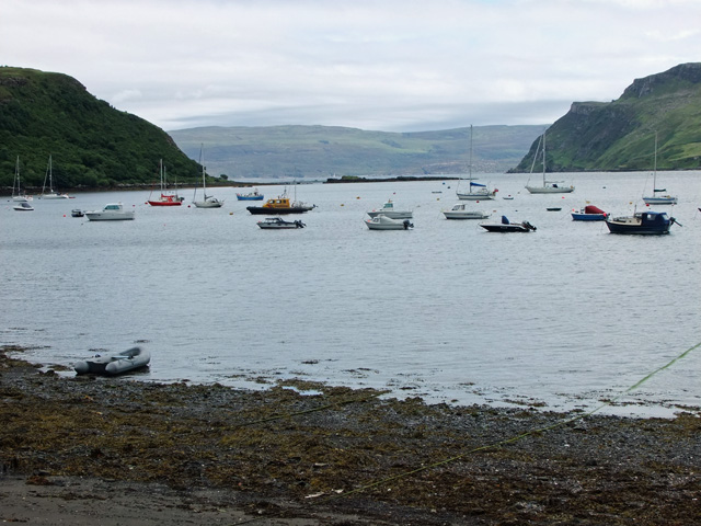 The many boats in the harbour